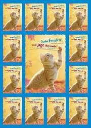 Jahreslosung 2019 - Aufkleber-Gruß-Karten, 12 Stück (Katze)