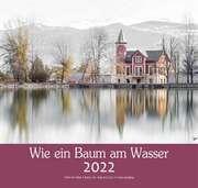 Wie ein Baum am Wasser 2022