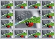 Aufkleber-Gruß-Karten: Gott hält dich in seiner Hand - 4 Stück
