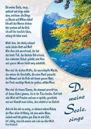 Postkarten: Du meine Seele, singe, 12 Stück